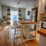 Bright, Newly Renovated Apartment In St. Henri