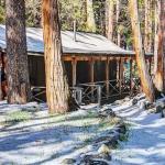 Twin Tree Lodge