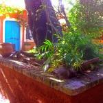 Corfu Town Garden Cottage