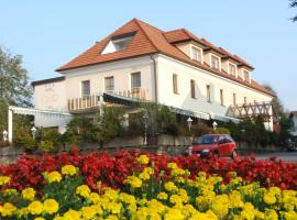 Hotel photo: Hotel Geier