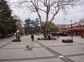Хотел снимка: Gozde Pansiyon