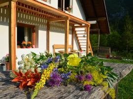Hotel near Alpy Julijskie