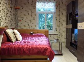 Hotel photo: Small and cozy studio apartment