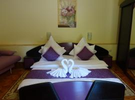 Hotel Photo: Pension Cuibul Viselor