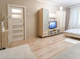 Hotel photo: Malaya Zhytomirskaya 10