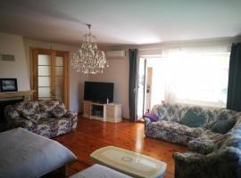 Hotel Photo: Irena Family House