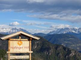 Hotel photo: Haflingerhof