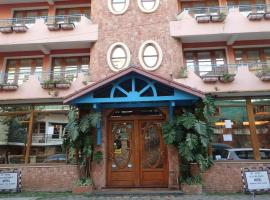 A picture of the hotel: Chalet des Roses