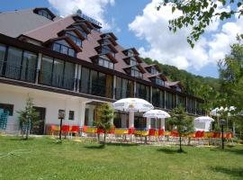 A picture of the hotel: Hotel Makpetrol Mavrovo