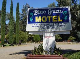 Hotel photo: Blue Gum Motel