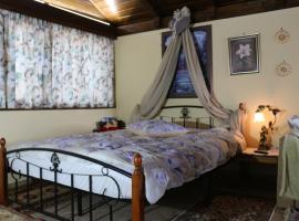 Hotel photo: Xilini Folitsa House