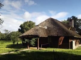 מלון צילום: Las Curiosas