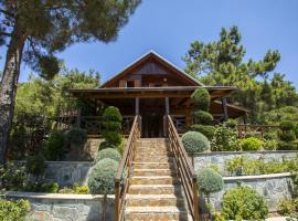 A picture of the hotel: Ricky Chalet Near Troodos