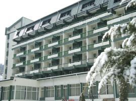 Hotel photo: Hotel Bradul