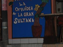 Hotel photo: Hostal Orquideas Granada