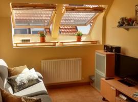 Hotel photo: Apartamento cómodo y luminoso en Isaba