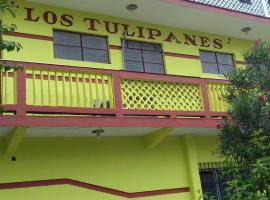 Hotel photo: Hotel los Tulipanes