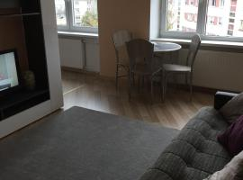 A picture of the hotel: Puskini 22 Apartment