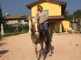 A picture of the hotel: Agriturismo MACOLE