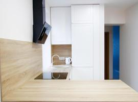 Hotel Photo: King Mindaugas Studio Apartment