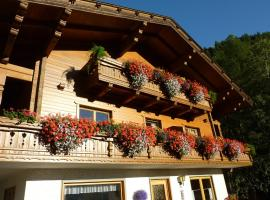 Hotel Photo: Pension Appartement Ambrosi