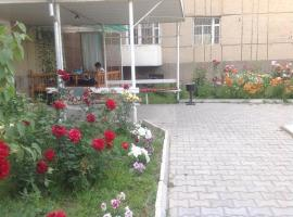 Hotel photo: Guest House Baktygul