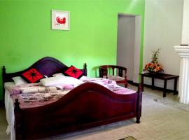 Hotel photo: New Green Forest Villa