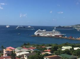 A picture of the hotel: La Vue de Basseterre