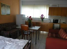 Hotel photo: Areti Apartment