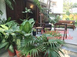 Hotel photo: The Boutique Home Stay - Utelia House No.9