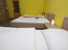 Hotel photo: Penzion Starr