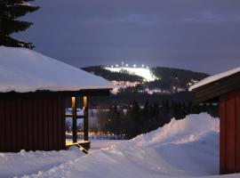 A picture of the hotel: Nordic Camping Frösön