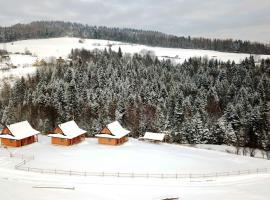 Hotel near 皮耶尼內山脈