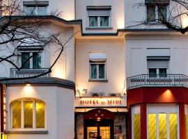 Hotel Photo: Hôtel du Midi