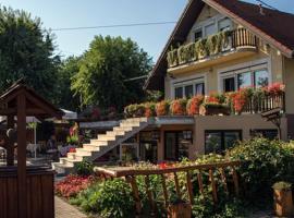 Hotel foto: Sarokhaz Panzio