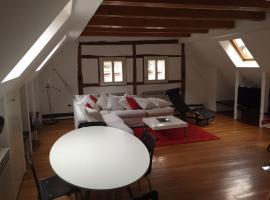 Hotel photo: Apartman studio Radiceva