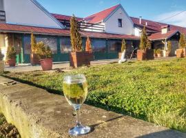 Hotel photo: Krčma Stari Mlin Dalj