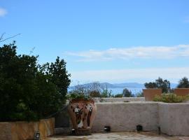 Hotel photo: Aristotelis