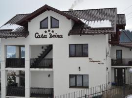 Hotel photo: Casa doina