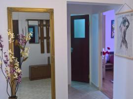 Hotel photo: Ap 3 cam ultracentral Rm. Valcea-Ana