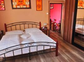 A picture of the hotel: Prostorný plně vybavený byt 4+1