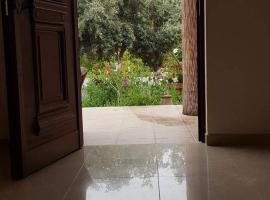 Hotel photo: apartment metaxoula