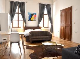 ホテル写真: Beethoven apartments