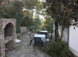 Hotel photo: Apartment Maslinica 772a