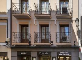 Hotel photo: Hotel El Acebo