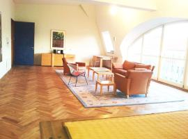 מלון צילום: Sehr große legale Dachwohnung