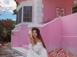 Hotel photo: Da Pink And White Palace