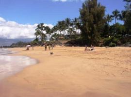 Hotel photo: Maui Vista #2-213 Condo