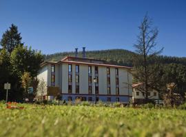 Hotel photo: Balneario Areatza