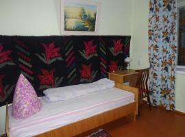 Hotel near Cahul